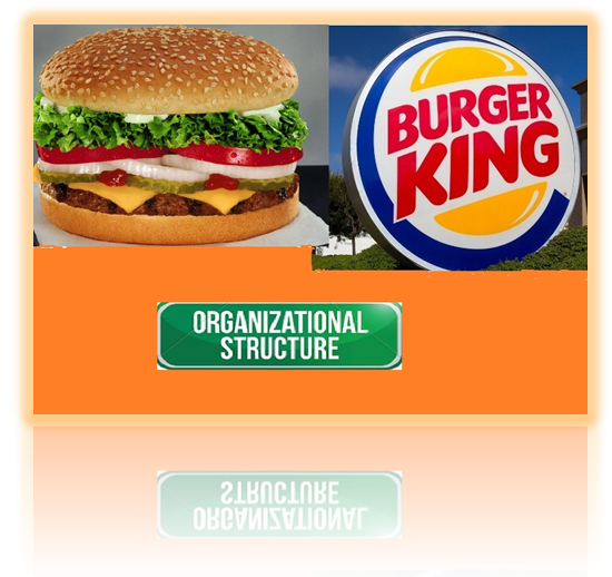 burger king - Assignment Help in UK