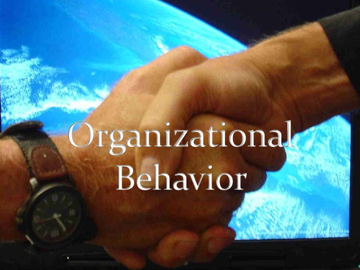 Unit 3 Organizational Structure & Behaviour Assignment CAPCO - Assignment Help UK