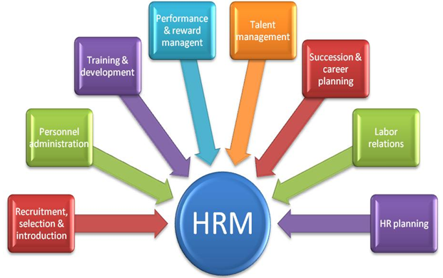 an overview of the roles of human resource personnel in a company An hr job description deals with a valuable resource: people  their role is at  the core of a company's success people  in their duties consult with executives  on strategic planning, and link a company's management with its employees.