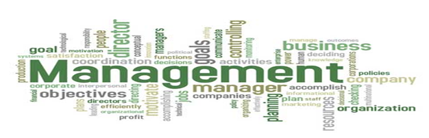 businesses management