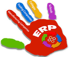 CIS 3009 ERP Assignment Solution