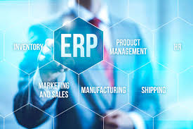 CIS 3009 ERP Implementation Reflective Essay