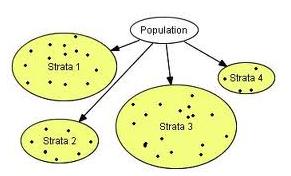 population - Assignment Help UK