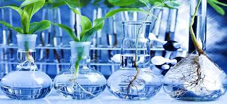 401002 Bio Science Assignment Sample