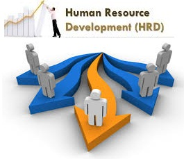 Human Resources Development - Assignment Help, Assignment Help UK, Assignment Help Coventry, Assignment Help London,