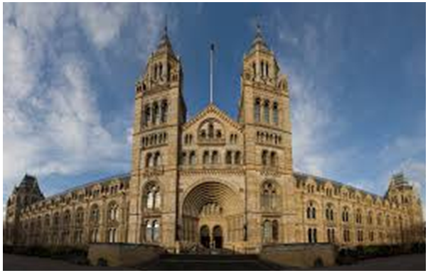 Natural history Museum - Assignment Help, Assignment Help UK, Assignment Help Coventry, Assignment Help London, Travel Tourism Assignment