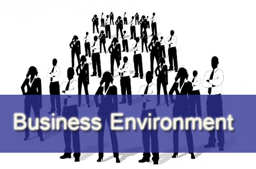 Unit 1 Business Environment Merit Copy
