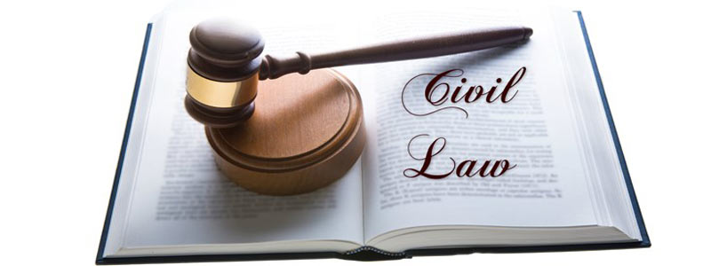 206LEG Civil Litigation Assignment Help, essay writing, online assignment help, assignment help australia, law assignment help