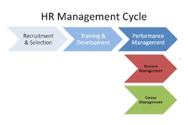 Unit 3 Elements of Human Resource Management Assignment
