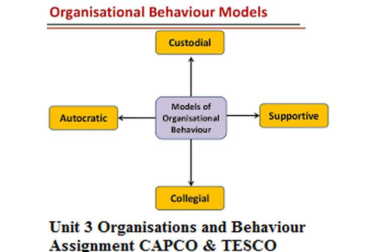 organisational behavior of tesco