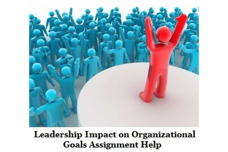 Leadership Impact on Organizational Goals Assignment Help