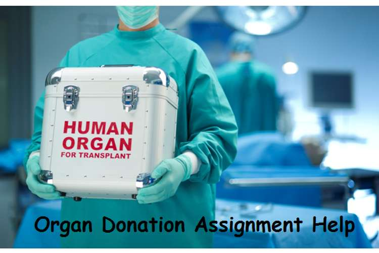 Organ Donation Assignment Help