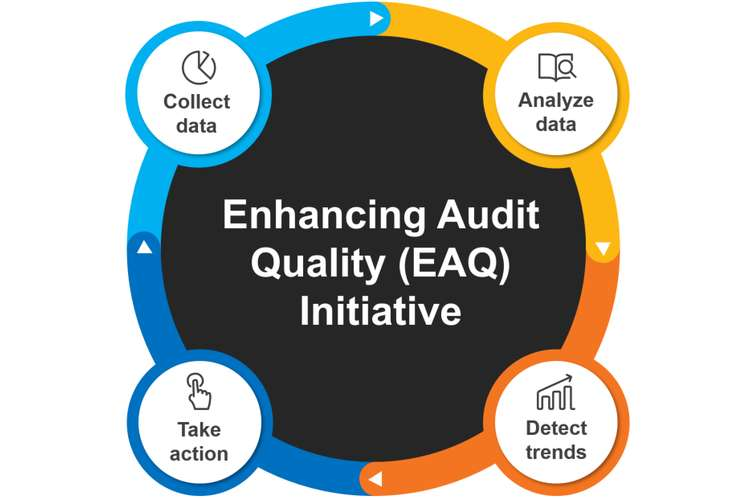 AUDT317 Auditing Quality Assignments Solution