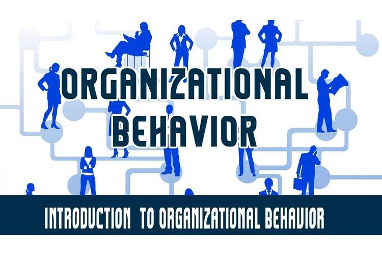 HC1052 Organization Behavior Assignment Help