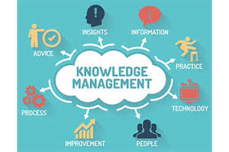 Knowledge Management System Assignment
