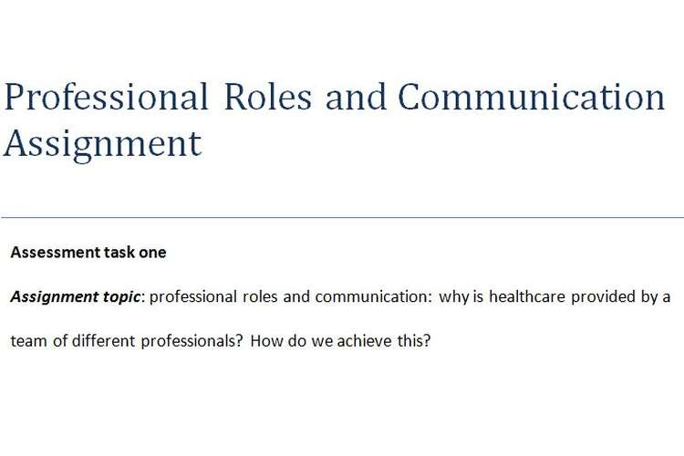 Professional Roles Communication Assignment