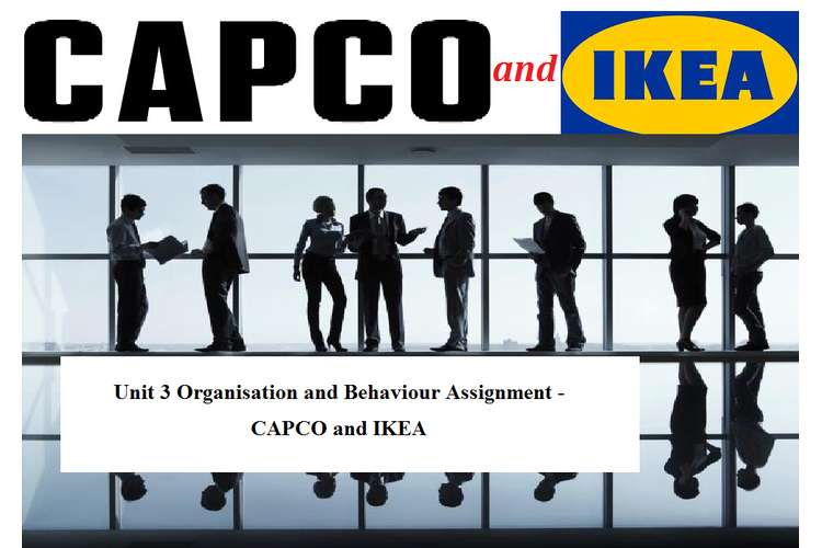 Unit 3 Organisation and Behaviour Assignment - CAPCO and IKEA