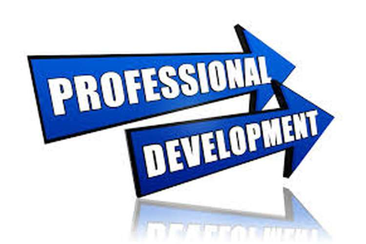 Unit 3 Employability and Professional Development Assignment