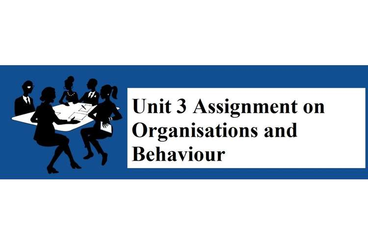 Unit 3 Assignment Organisations Behaviour