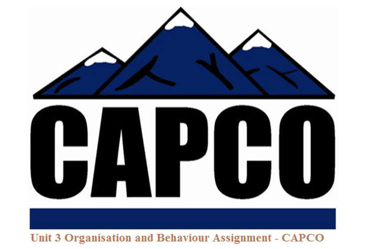 Unit 3 Organisation and Behaviour Assignment - CAPCO