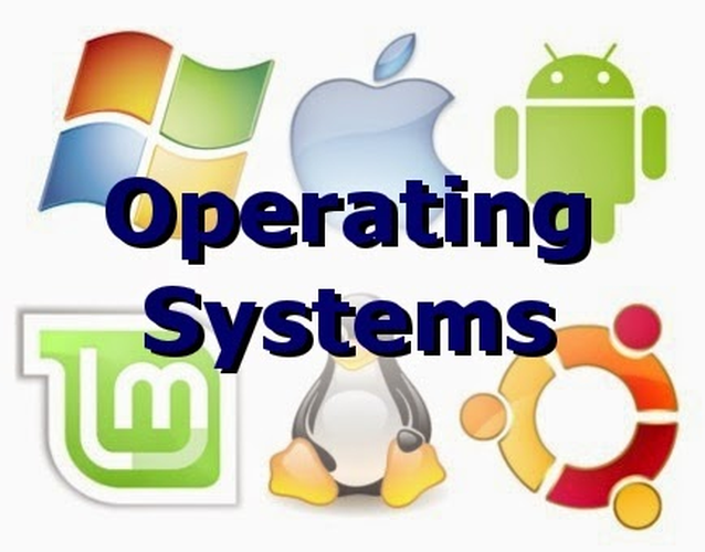 Supporting Operating System Assignment