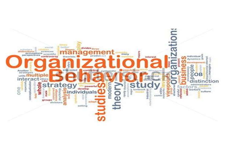 Unit 3 Organisational Behaviour Assignment - Capco structure