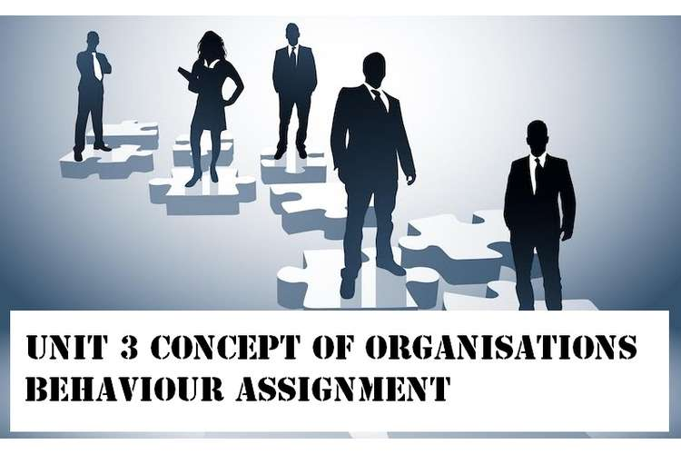unit 3 Concept Organisations Behaviour Assignment