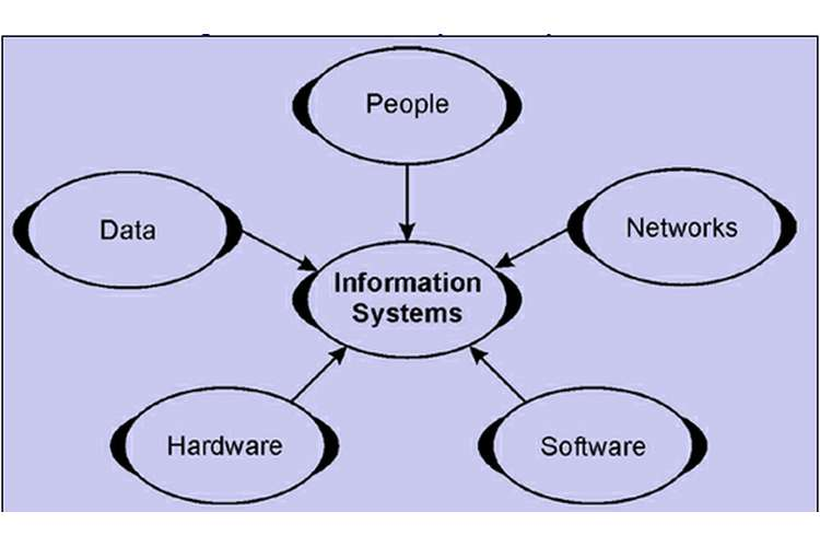 Information System Oz Assignments