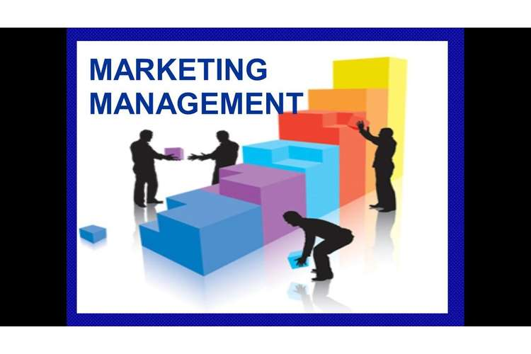 Case Study Of Marketing Management Assignment
