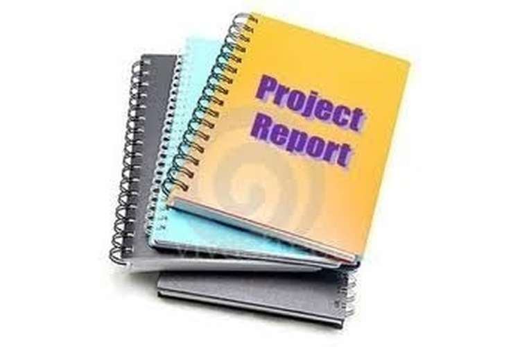 Project Report Oz Assignments