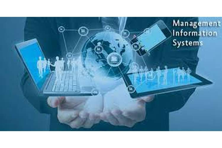HS2061 Management Information Systems Assignment Help