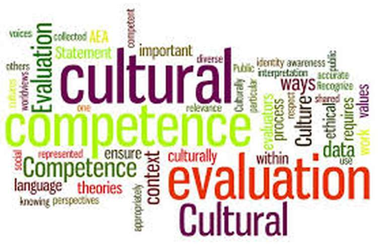 HEA230 Cultural Competence in Healthcare Assignment Help