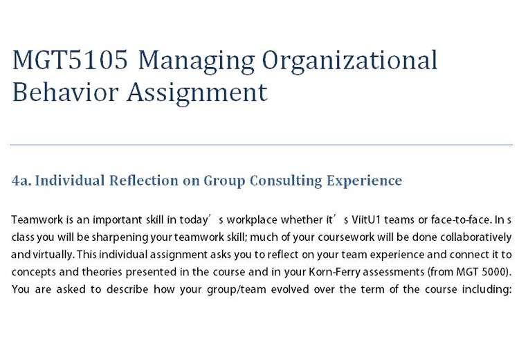 MGT5105 Managing Organizational Behavior Assignment