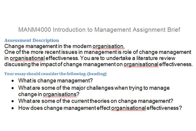 MANM4000 Introduction Management Assignment Brief