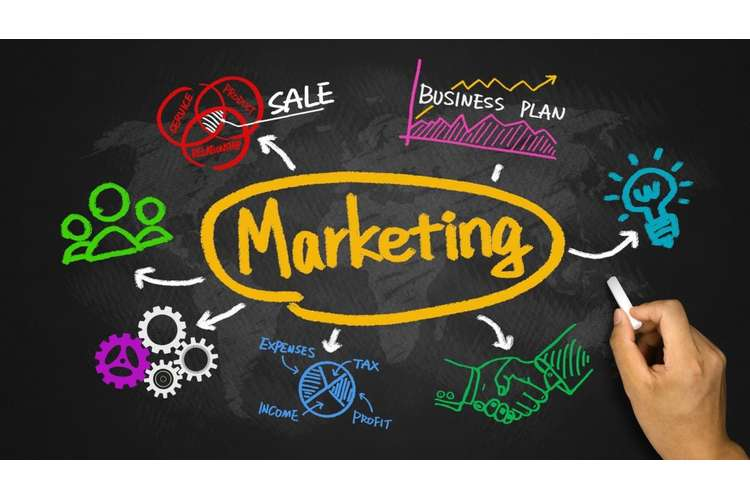 Introduction to Marketing Assignment Help