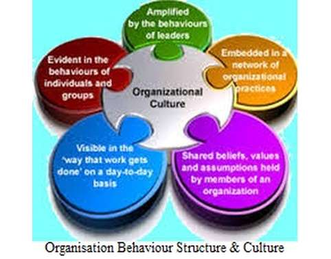organizational behavior assignment 3 Organizational behavior week 1 assignment 3  assignment 3: dropbox assignment evaluating employee characteristics some research studies (ilies & judge, 2003 saari & judge, 2004) report that genetics play a very important part in whether an employee has job satisfaction their work suggests that the attitudes, personality, and.