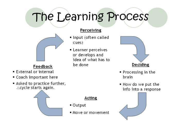 Educational Learning Process Oz Assignments