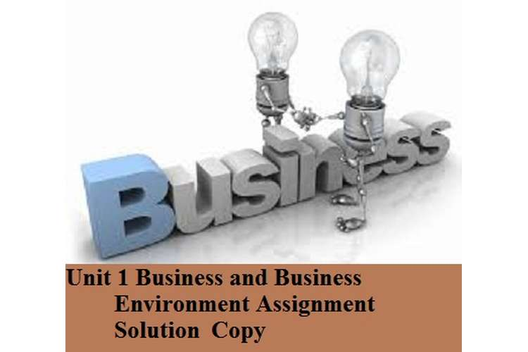 Business and Business Environment Assignment Solution Copy