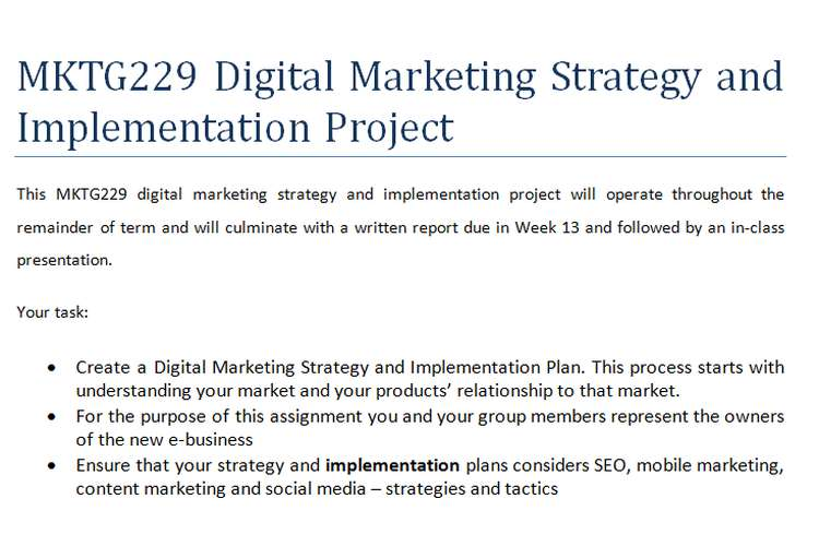 MKTG229 Digital Marketing Strategy and Implementation Project