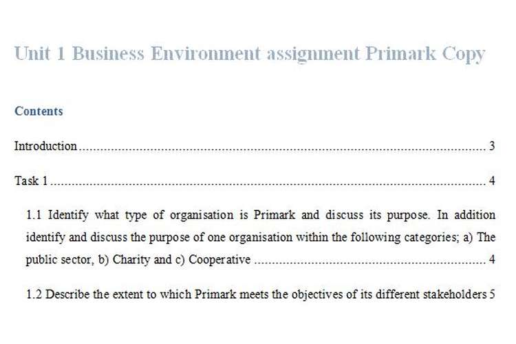 Unit 1 Business Environment Assignment Primark Copy