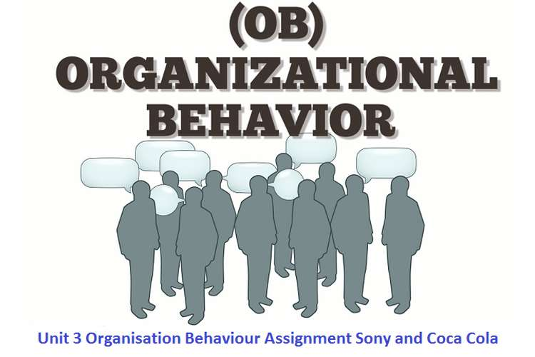 Unit 3 Organisation Behaviour Assignment - Sony and Coca Cola
