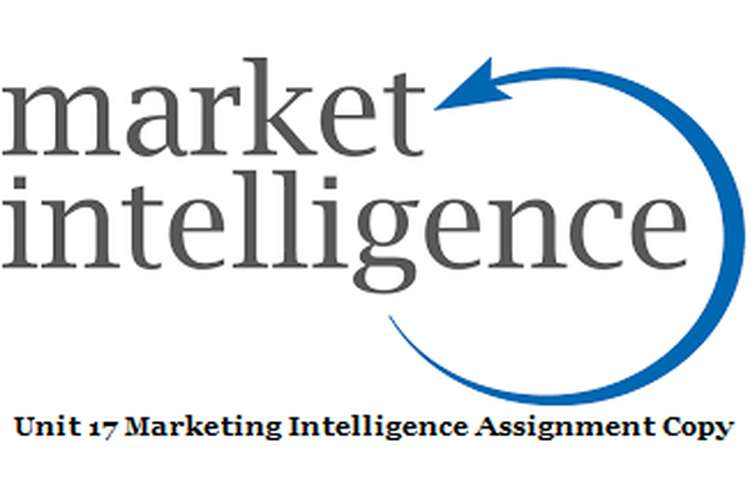 Unit 17 Marketing Intelligence Assignment Copy