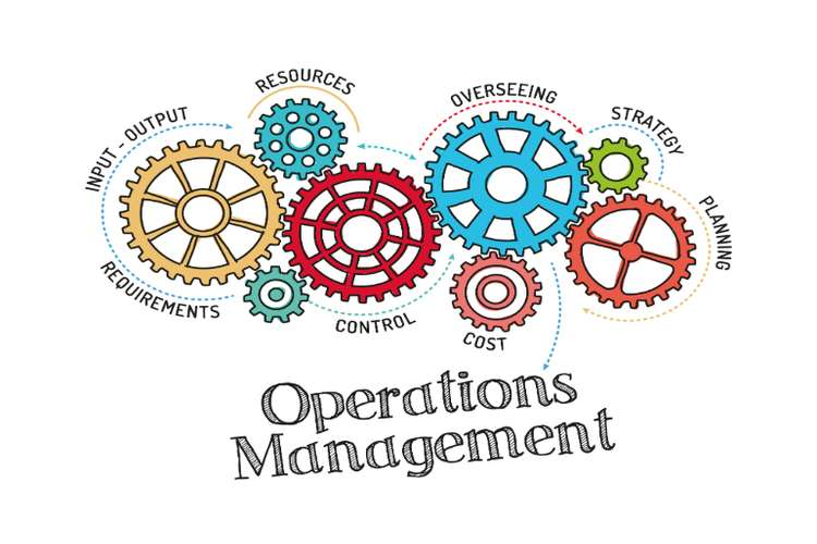 MGMT20130 Operations Management Oz Assignments