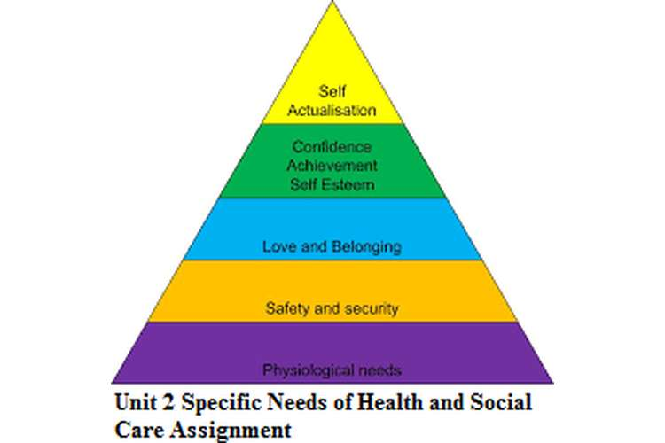 individual health needs assignment Assess individual in health care health care, nutrition and physiotherapy however any mental health needs are recorded and the relevant services provided.