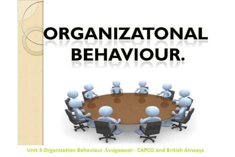 Unit 3 Organisation Behaviour Assignment - CAPCO and British Airways