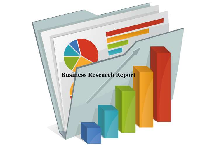CIS8011 Business Research Report