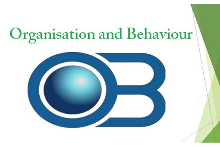 Unit 3 Organisation and Behaviour Assignment