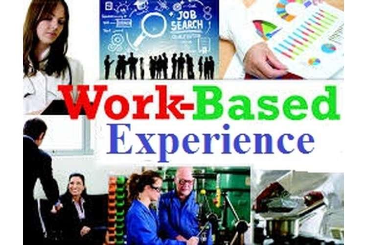 Work Based Experience Merit Copy