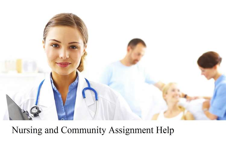 Nursing Community Assignment Help