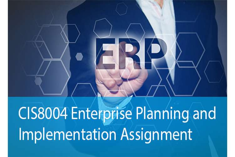 CIS8004 Enterprise Planning Implementation Assignment